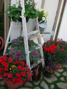 whished I had kept that old ladder now!