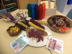 Exploring color... Can you find a match? Can you make this color? - from Beyond 4walls (FynesKs on Twitter) reggio style, preschoolfal idea, autumn activ, explor colour