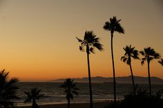 My favorite sunset (Manhattan Beach, CA)