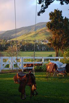 saddle swing + beautiful backyard view