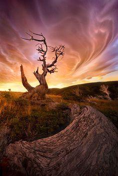 "500px / Photo ""Lenticular Dimension"" by Marc Adamus"