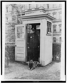 White House Pets: The Adorable And Weird Creatures Keeping U.S. Presidents Company (PHOTOS) Herbert Hoover's dog, King Tut