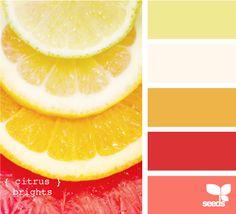 citrus brights color palettes, design seeds, color schemes, color combos, kitchen colors, wedding colors, accent colors, summer colors, summer weddings