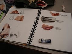 Face drawing practice - what a great idea! 5th grade sketchbook idea.