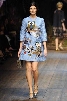 Dolce & Gabbana | Fall 2014 Ready-to-Wear Collection | Style.com mini dress, fashion weeks, autumn, dolc, fall 2014, photo galleries, gabbana fall, baby blues, owls