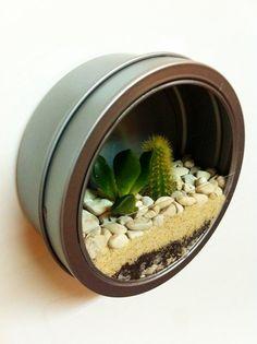 Fridge Magnet Terrarium - <3