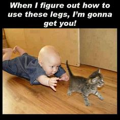 Funny baby and kitten