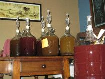 PRIMITIVE COOKING, PLANT MEDICINE, AND MEAD MAKING