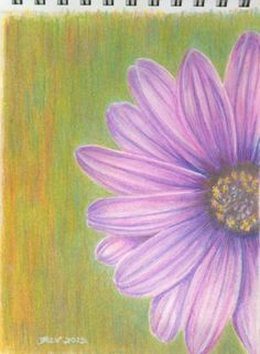 The finished flower painting, ready for framing. Copyright. All rights reserved. drawing flowers step by step, colored pencil flowers, painting flowers, flower paintings, color pencil, flower tutorial, colored pencil drawings, colored pencils, pencil drawing flowers