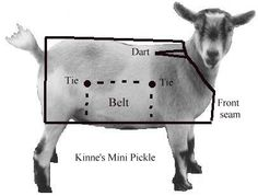 Goat Blanket Tutorial  - good idea for goats recovering from illness #goatvet