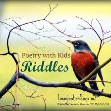 Kids love writing riddle poems. Try these fun, descriptive riddle poems with your children.