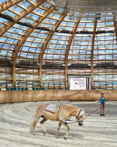 Stork Nest Farm looks like a birds nest but is actually an indoor arena.
