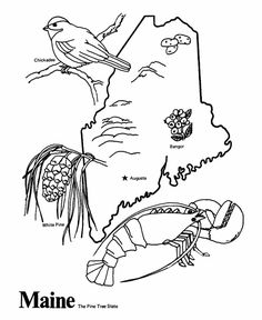 50 States Coloring Pages - print out the page for your state and share it with your sponsored child