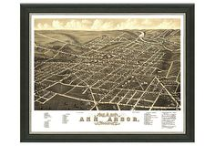 vintage-inspired map of Ann Arbor circa 1880
