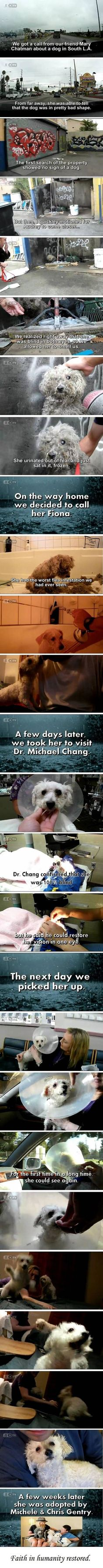 Awesome rescue of a blind dog. heard this on the news awhile back, brought me to tears, now she is with a loving family...GREAT