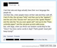 Ha cats, languages, laugh, dogs, dog cat, speak cat, funni, humor, thing