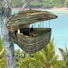 hand, dinner, tree houses, bird nests, resort