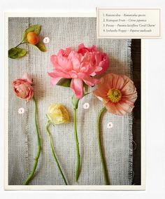 wedding flower, branch, and berry guide  http://rstyle.me/n/jt63mpdpe