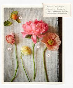wedding flower, branch, and berry guide  http://rstyle.me/n/jt63mpdpe berri guid, wedding flowers, branch, flower idea, fab flower, flower chart
