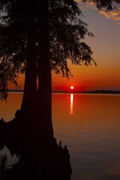 ✯ Sunset Beauty at Reelfoot Lake