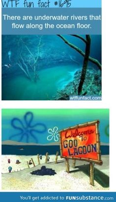 Spongebob makes sense now