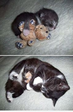 Still sleeps with a friend. Find Cute things to Pin here: http://don.greymafia.com/?p=41187