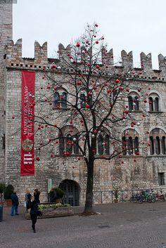 Christmas in  Trento, Italy Trentino-Alto Adige