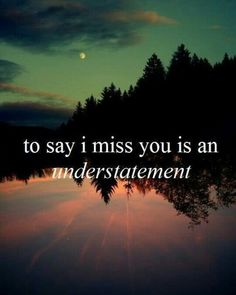 To say I miss you is an understatement...