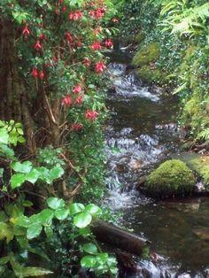 Kylemore Abbey Gardens