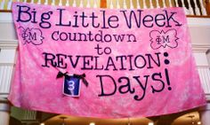 Cute banner for Big/Little Revelation countdown