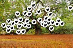 Mi árbol de crecimiento personal by Dielmer Fdo Giraldo #eduPLEmooc gracias a @raulillodiego