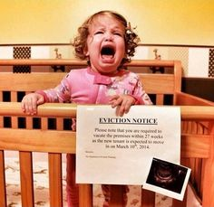 Seriously laughing over here, Best Pregnancy Announcement Ever!