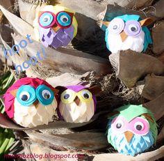 Owl-Hoot!