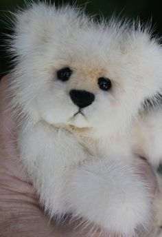 "Mink Fur Teddy Bear  www.kimbearlys.com ""SOLD"""