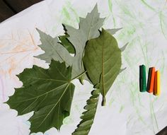 An easy craft for fall: Leaf rubbings!