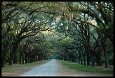 Isle of Hope, Savannah, Georgia