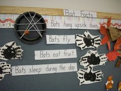 Bat Facts bulletin board with hand print bats and sentence strip facts