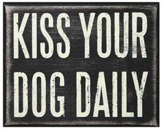 dog kisses anim, dogs, pet, doggi, puppi, dog daili, quot, friend, kisses