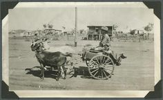 File:StateLibQld 2 242645 Young boy with a goat cart on a Mount Isa street, ca. 1936.jpg