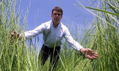 Tall wheatgrass from varieties in HUngary have been demonstrated yields higher than 17 dried tons / ha per year. Specific conditions must be evaluated to select best alternatives.