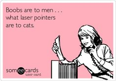 Boobs are to men . . . what laser pointers are to cats. Sex, Adult, Naughty, Dirty, humor, jokes, funny
