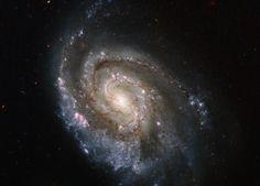 Stellar Explosions in NGC 6984 - SpaceRef