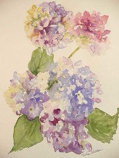 hydrangeas, loose watercolor, via Flickr. Watercolor by Tisha Sheldon