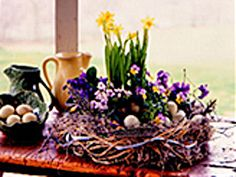 Bird's Nest Centerpiece: • Clay dish from terra-cotta pot (we used a 12-in dish) • Long bundle raffia • Spanish moss • Scraps of ribbon, feathers & small twigs or branches • 2 pots of mini-daffodils • As many potted containers of pansies that will fit into the terra-cotta dish (we used 4) • Small brown or blue eggs (optional) [cont]