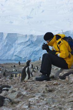 http://www.GraphicDesignNYC.net Antartica.