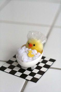 Cute Eggshell Chick!