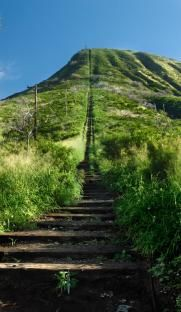 You'll definitely feel the burn at the Koko Head Crater Trail.  Make sure to get out there early, before it gets too hot.