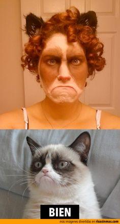 Disfraz de Grumpy Cat.