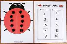 ladybug math, math activities