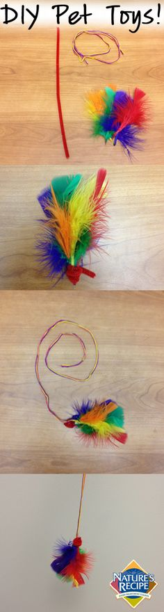 This easy #DIY cat toy can be made in minutes! #cat #pet #craft